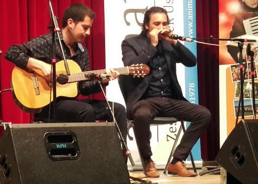 zelf mondharmonica leren spelen